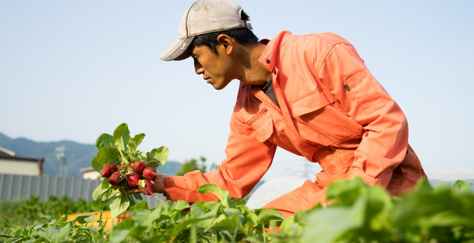 信州松代みやざき農園